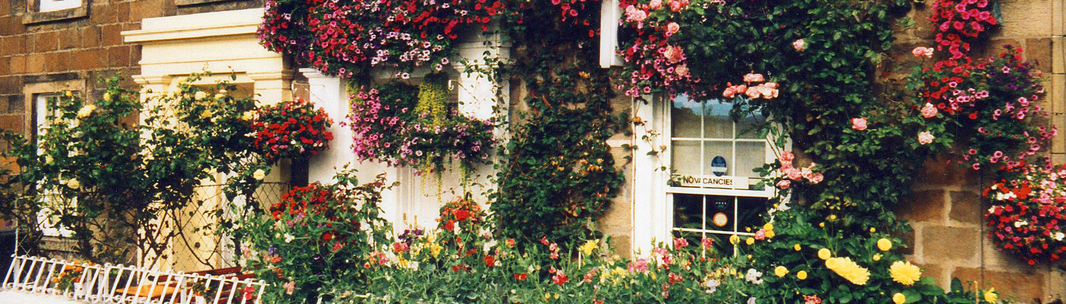 forth guest house Stirling in bloom